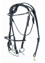 32620openbridle