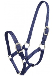 544922 small pony halter