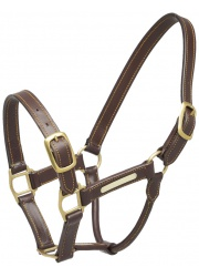 547106 aintree halter leather 357054092