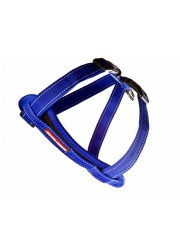 chest_plate_harness_blue_lowres__84593_1481808430_1280_1280_25390