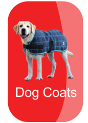 hh-dog-coats-button