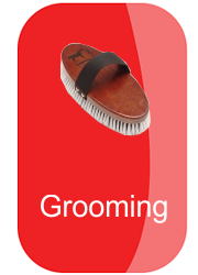 hh-grooming-button-12824