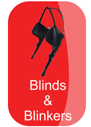 hh_blinds_and_blinkers_button