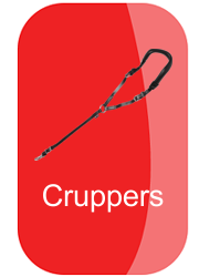 hh_cruppers_button