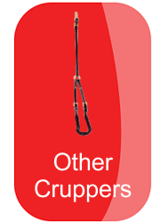 hh_other_cruppers_button_13391
