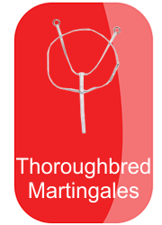 hh_thoroughbred_martingales_button