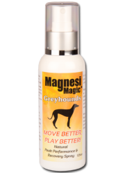 magnesi magic greyhound