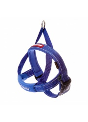 quick_fit_harness_blue_lowres__10960_1480668580_1280_1280_19754